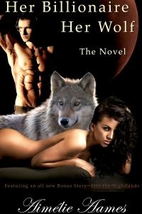HBHW Novel